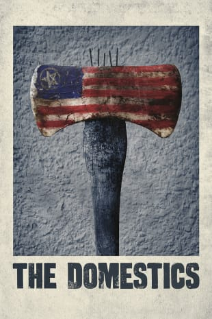movie poster for The Domestics