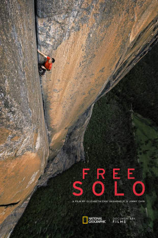 movie poster for Free Solo