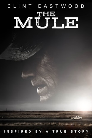 movie poster for The Mule