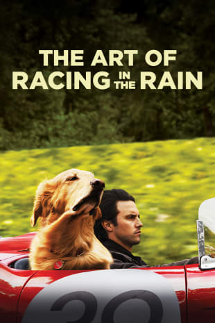 movie poster for The Art Of Racing In The Rain