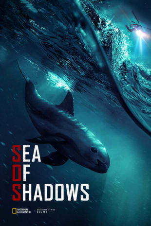 movie poster for Sea Of Shadows