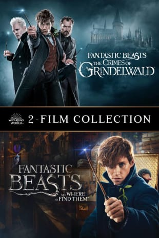 movie poster for Fantastic Beasts The Crimes Of Grindelwald / Fantastic Beasts And Where To Find Them