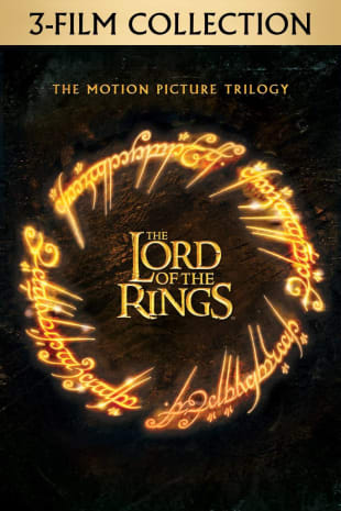 movie poster for The Lord of the Rings: The Motion Picture Trilogy