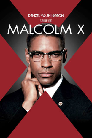 movie poster for Malcolm X