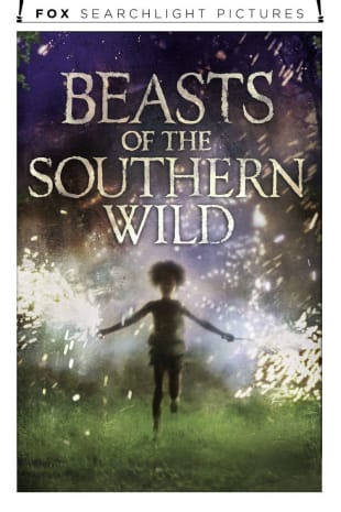 movie poster for Beasts Of The Southern Wild