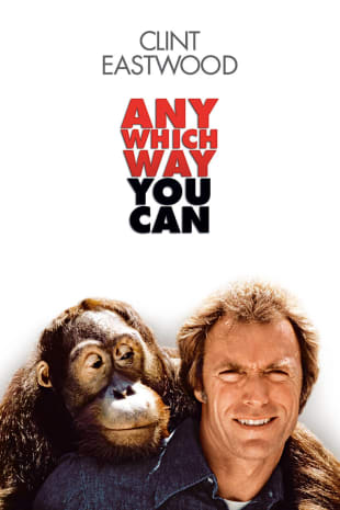movie poster for Any Which Way You Can