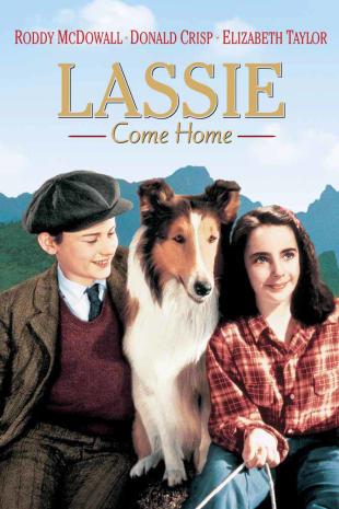 movie poster for Lassie Come Home