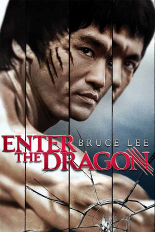 movie poster for Enter The Dragon