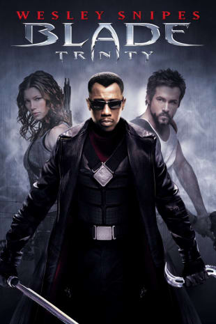 movie poster for Blade: Trinity