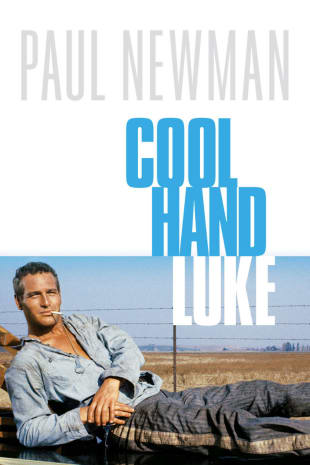 movie poster for Cool Hand Luke