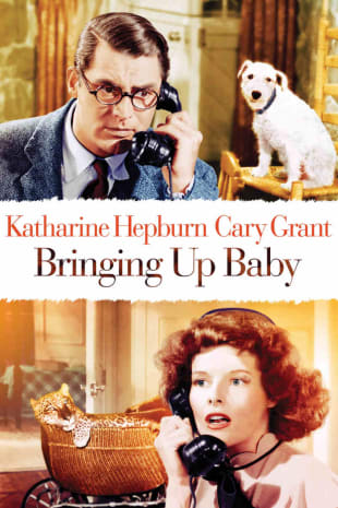 movie poster for Bringing Up Baby
