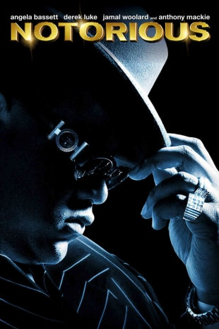 movie poster for Notorious (2009)