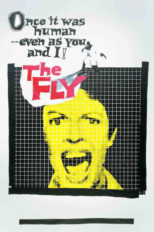 movie poster for The Fly (1958)