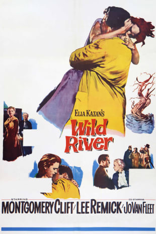 movie poster for Wild River