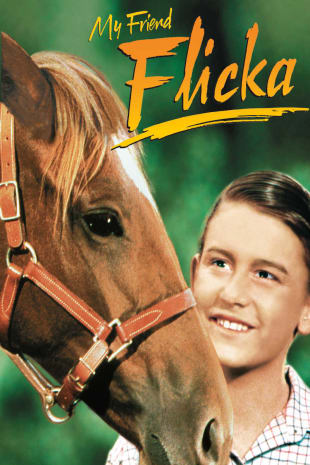movie poster for My Friend Flicka