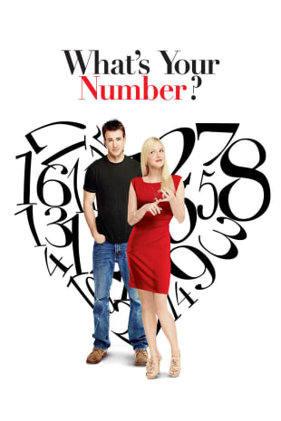movie poster for What's Your Number?