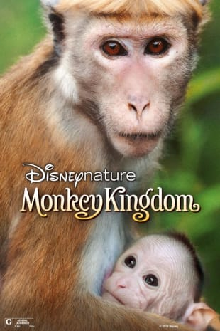 movie poster for Monkey Kingdom