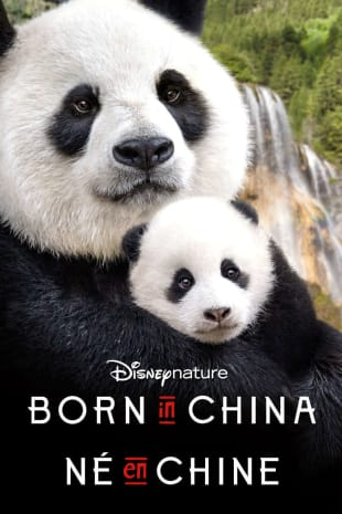 movie poster for Born In China