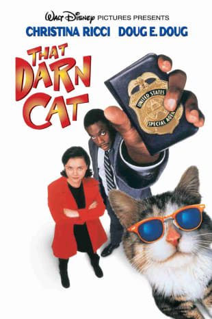 movie poster for That Darn Cat