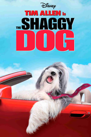 movie poster for The Shaggy Dog