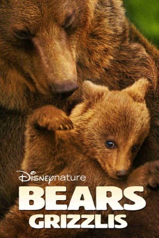 movie poster for Bears