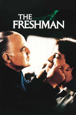 movie poster for The Freshman