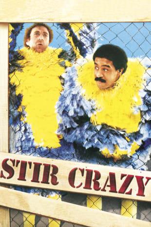 movie poster for Stir Crazy