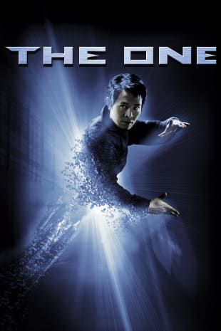 movie poster for The One