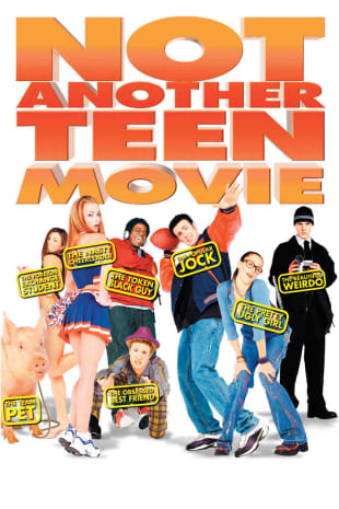 movie poster for Not Another Teen Movie