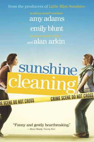 movie poster for Sunshine Cleaning