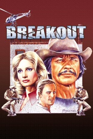 movie poster for Breakout (1975)