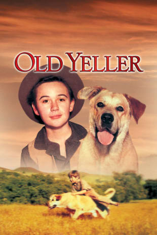 movie poster for Old Yeller (1957)