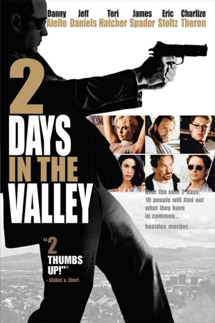 movie poster for 2 Days in the Valley