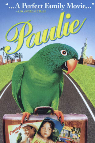 movie poster for Paulie