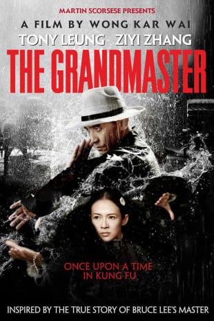 movie poster for The Grandmaster