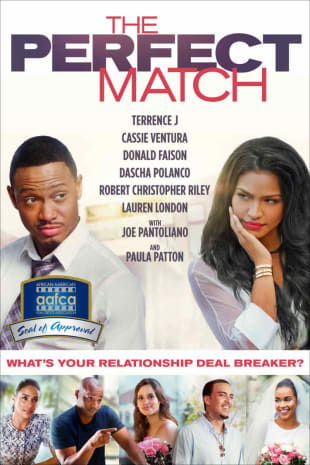 movie poster for The Perfect Match