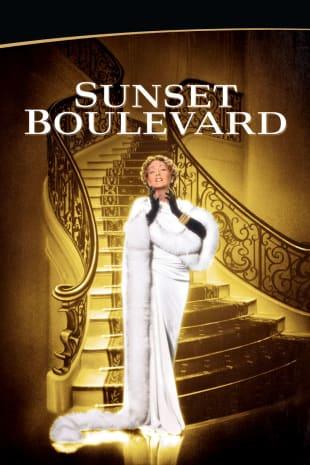 movie poster for Sunset Boulevard