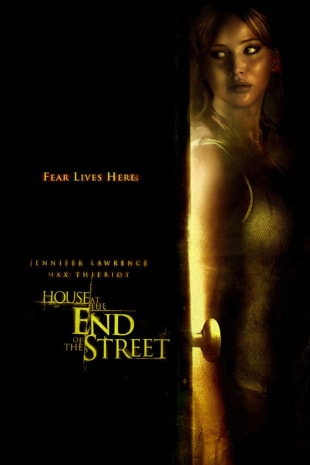movie poster for House At The End Of The Street