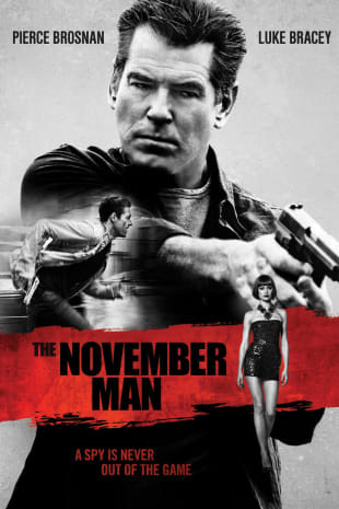 movie poster for The November Man