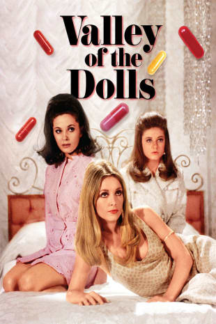 movie poster for Valley Of The Dolls