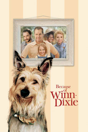 movie poster for Because Of Winn-Dixie