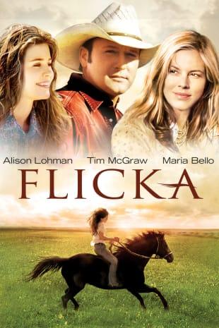 movie poster for Flicka