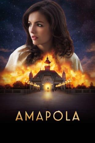 movie poster for Amapola