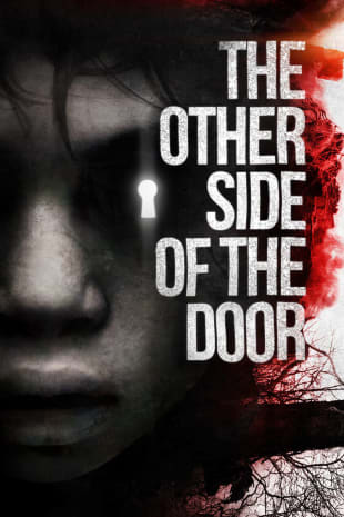 movie poster for The Other Side Of The Door