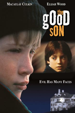 movie poster for The Good Son