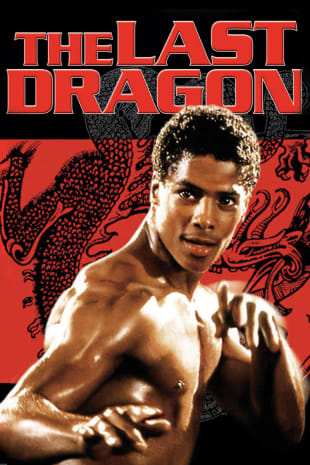 movie poster for The Last Dragon