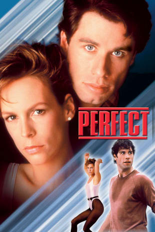 movie poster for Perfect