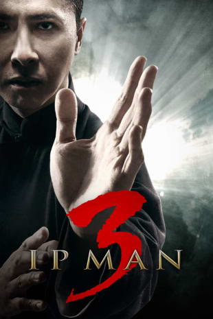 movie poster for Ip Man 3