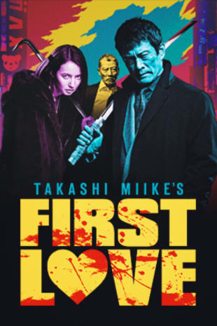 movie poster for First Love