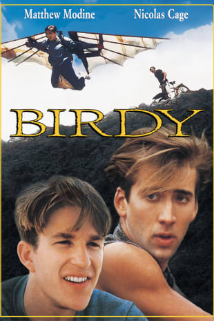 movie poster for Birdy